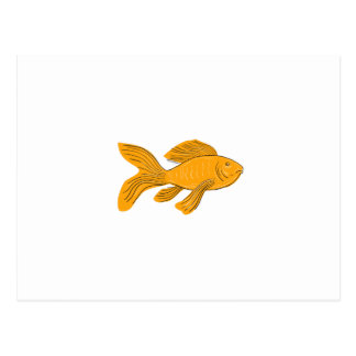 Gold Butterfly Koi Swimming Drawing Postcard
