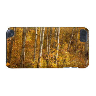 Gold iPod Touch (5th Generation) Cover