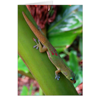 Gold Dust Gecko Card