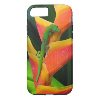 Gold Dust Gecko on Heliconia iPhone 8/7 Case