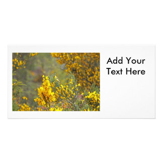 Gold Finch and Yellow Flowers Personalized Photo Card