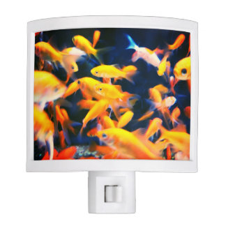 Gold Fish Night Light