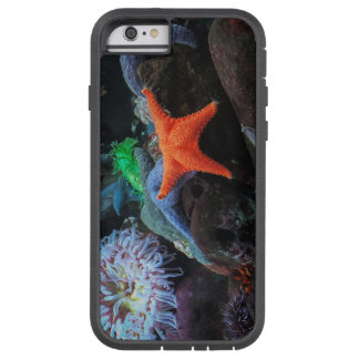 Gold Star Tough Xtreme iPhone 6 Case