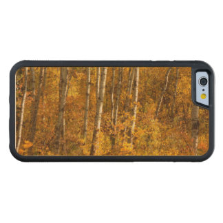 Gold Carved® Maple iPhone 6 Bumper Case