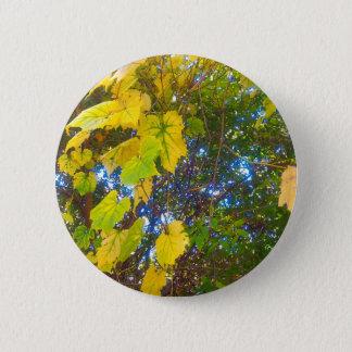 Golden 2 Inch Round Button