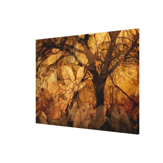 Golden and Brown Leaves | Merritt Island, FL Canvas Print