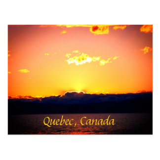 Golden And Pink Sunset Postcard