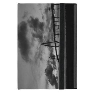 Golden Arthur Ravenel Pano Grayscale Cover For iPad Mini