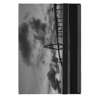 Golden Arthur Ravenel Pano Grayscale iPad Mini Case