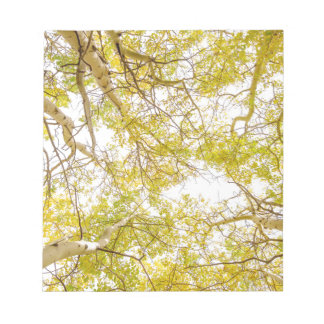 Golden Aspen Forest Canopy Notepad