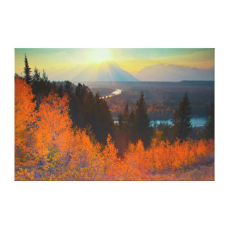 Golden Aspens Above Snake River At Sunset Canvas Print