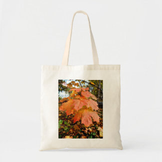 Golden Autumn Leaves Tote Bag