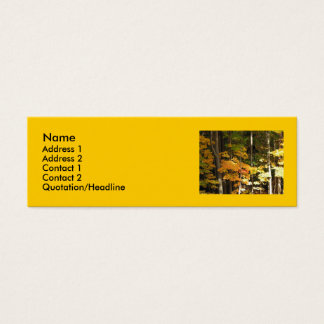 Golden Autumn Maples Mini Business Card