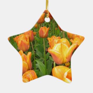 Golden bed of tulips, Keukenhof Ceramic Star Ornament