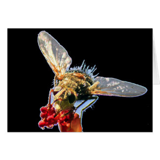 Golden Bee Blank Greeting Card