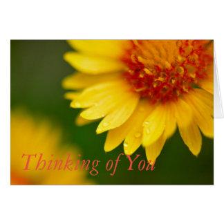 Golden Blanket Flower Card