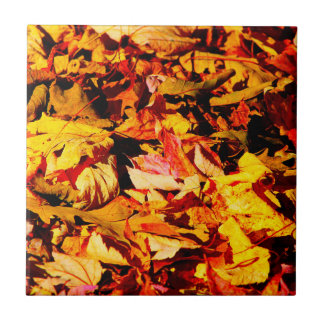 Golden Brown Autumn Leaves Tiles