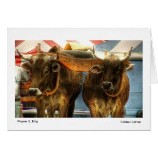Golden Calves Card
