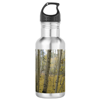 Golden Carpet Beneath a Grove of Quaking Aspen 532 Ml Water Bottle