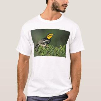 Golden-Cheeked Warbler T-Shirt