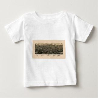 Golden Colorado 1882 Baby T-Shirt