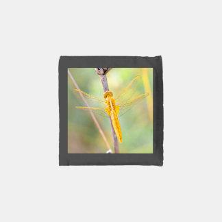 Golden Delicious dragonfly