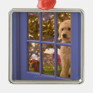 Golden Doodle puppy looking out glass door with Silver-Colored Square Ornament