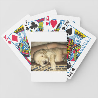 Golden Doodle Puppy Sleeping Bicycle Playing Cards
