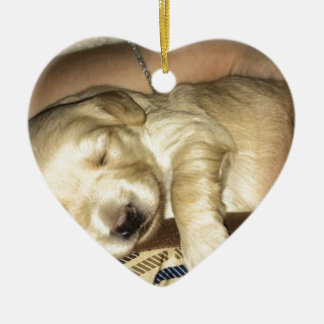 Golden Doodle Puppy Sleeping Ceramic Ornament