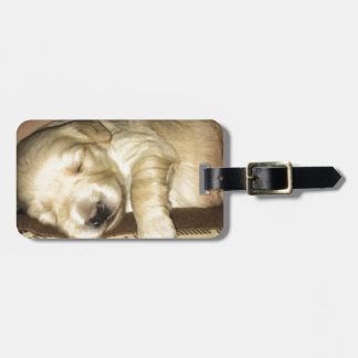 Golden Doodle Puppy Sleeping Luggage Tag