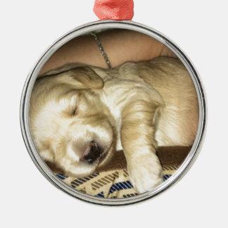 Golden Doodle Puppy Sleeping Metal Ornament