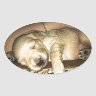 Golden Doodle Puppy Sleeping Oval Sticker