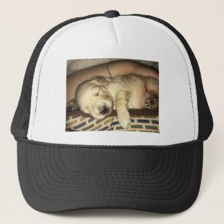 Golden Doodle Puppy Sleeping Trucker Hat