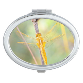 Golden dragonfly compact mirrors