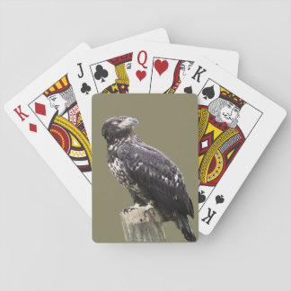 Golden Eagle Photo Playing Cards