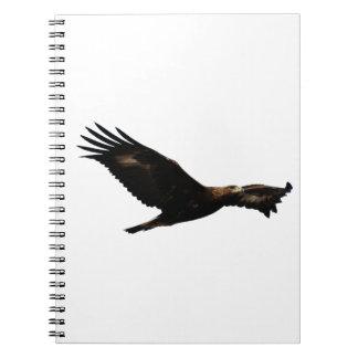 Golden Eagle Soaring Spiral Notebooks