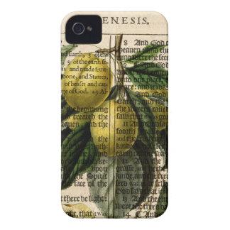Golden Esperen Plum Flower iPhone 4 Covers