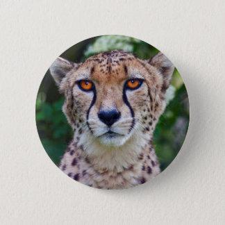 Golden Eyes Badge 2 Inch Round Button