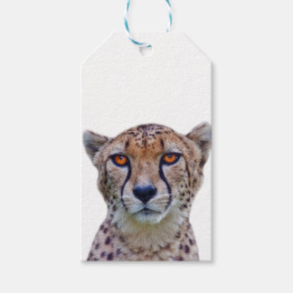 Golden Eyes Gift Tags