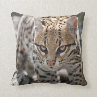 Golden Eyes Pillow