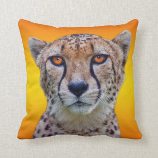 Golden Eyes Pillow (Sunburst)