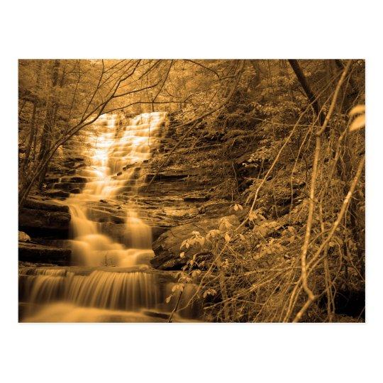 Golden Falls - Legget Falls Postcard