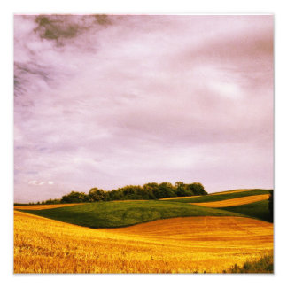 Golden Farmland Photo Print