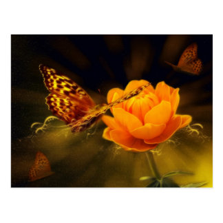 Golden Flying Butterfly Postcard