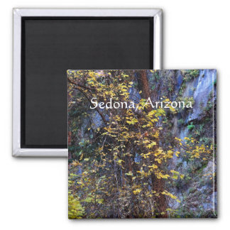 Golden foliage Sedona, Arizona Magnet