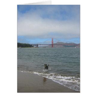 Golden Gate Bridge Jake Card