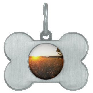 Golden Glow of Sunset Pet Name Tags