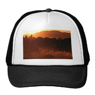 Golden haze at sunset illuminates cactus and grass trucker hat