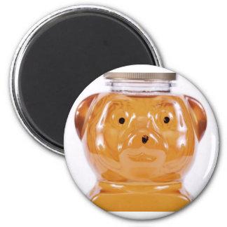 Golden Honey Bear Face View Magnet
