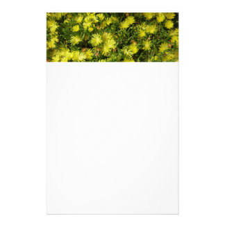 Golden Ice Plant Yellow Flowers Stationery Paper
